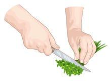 De handen van de chef-kok. Stock Afbeeldingen