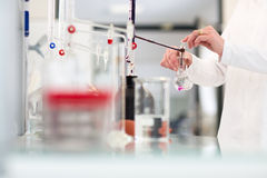 De handen van de laboratoriumarbeider terwijl bij het werk op een onderzoekscentrum in een laboratorium, Royalty-vrije Stock Foto