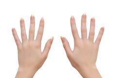 De handen van de vrouw Stock Afbeeldingen