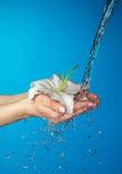 De handen van de vrouw met lelie en stroom van water. stock afbeeldingen
