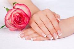 De handen van de vrouw met perfecte Franse manicure stock afbeelding