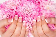 De handen van de vrouw met perfecte Franse manicure Royalty-vrije Stock Fotografie