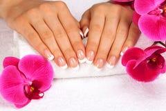 De handen van de vrouw met perfecte Franse manicure Stock Foto's