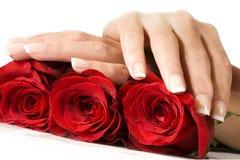 De handen van de vrouw met rode rozen stock afbeelding