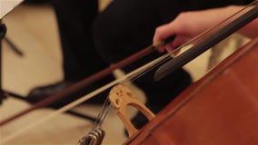 De handen van een musicus die op een contrabas, uitstekende, Dubbele basspeler spelen overhandigt het spelen contrabas muzikaal i stock footage