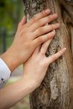 De handen van het paar met ringen sluiten omhoog stock afbeelding