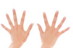 De handen van twee vrouwen met uitgespreide vingers Royalty-vrije Stock Foto's