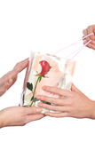 De handen van vrouwen en het pakket royalty-vrije stock afbeelding