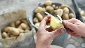 De handen van vrouwen maken aardappels schoon stock video
