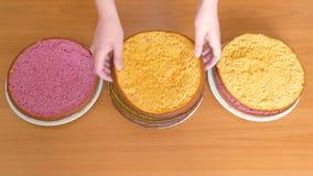De handen van vrouwen verplaatsen de cakes van een verschillend kleurenkoekje in verschillende platen stock footage