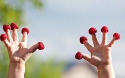 De handen van weinig kind met frambozen stock foto
