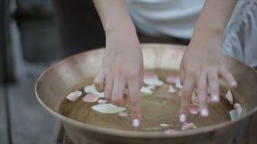 De de handenaanraking van het meisje nam bloemblaadjes in een ronde ton toe stock videobeelden