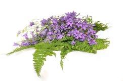De handklokken van bloemen Stock Afbeeldingen