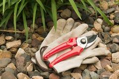 De handschoenen en de hand van het werk pruner Royalty-vrije Stock Afbeelding