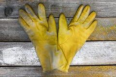 De handschoenen van vrouwen Stock Afbeelding