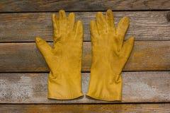 De handschoenen van vrouwen Stock Foto