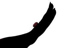 De handsilhouet van de vrouw met ring Royalty-vrije Stock Afbeeldingen
