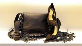 De handtas en de schoenen van het damesleer stock afbeelding