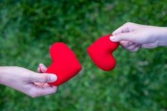 De handvrouwen verzenden rood hart en de handmensen verzenden rood hart voor Uitwisselingsharten, Dubbel hart, grasachtergrond stock afbeelding