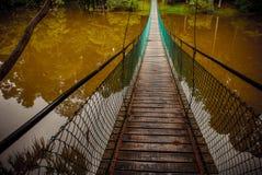 De hangbrug over het meer, Borneo, Sabah, Maleisië Stock Foto's