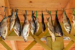 De hangende bovenkant van riviervissen - onderaan droog op een kabel royalty-vrije stock fotografie