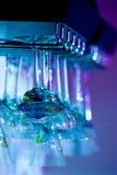 De hangende Glazen van de Staaf Royalty-vrije Stock Afbeelding