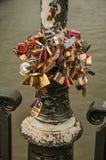 De hangsloten maakten aan elkaar het vieren liefde op pool over brug vast bij de Zegenrivier in Parijs Royalty-vrije Stock Afbeeldingen