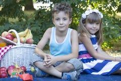 De har en picknick Arkivfoto
