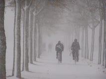 De harde winter Royalty-vrije Stock Foto