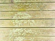 De hardhoutraad van hardhout wordt gemaakt verzet zich tegen verwering die Houten pijler boven overzees stock afbeeldingen