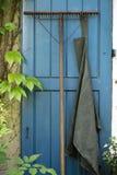 De hark van de tuin Stock Foto's