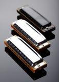 De harmonika's van de boom stock foto