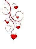 De harten van de liefde op krullende stam Stock Afbeelding
