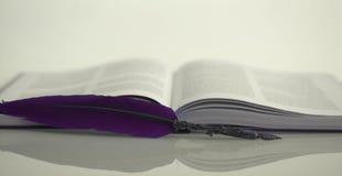 De hartstocht voor boeken en literatuur royalty-vrije stock afbeeldingen
