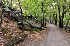 ` De Harzer Hexenstieg de ` de sentier de randonnée en montagnes de Harz Image libre de droits