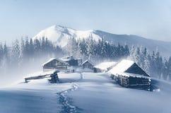 De haut froid de matin de Noël dans les montagnes carpathiennes image libre de droits