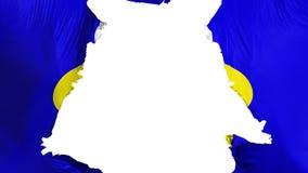 De haveloze vlag van Brussel royalty-vrije illustratie