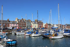 De haven Arbroath Angus Scotland van jachtenarbroath Stock Foto