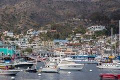 De Haven van Avalon op Catalina Island Royalty-vrije Stock Foto's