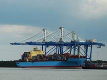 De haven van Charleston Stock Afbeeldingen