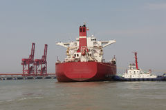 De haven van China Qingdao en de terminal van het tonijzererts stock afbeelding