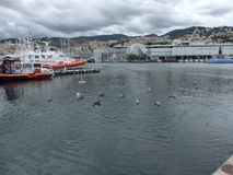 De Haven van Genua Royalty-vrije Stock Foto