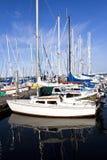De haven van het jacht op de zomer in Denemarken 19-a Stock Fotografie