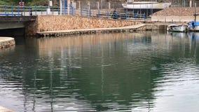 De haven van mahon stock video
