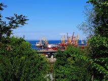 De haven van Odessa in groen Royalty-vrije Stock Afbeelding