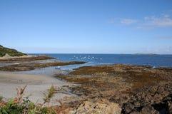 De haven van Portelet, Guernsey Stock Foto