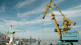 De havenkranen zijn inactief stock video