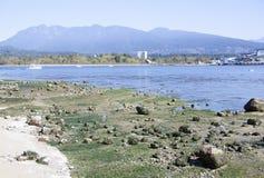 De Havenlandschap van Vancouver Stock Afbeeldingen