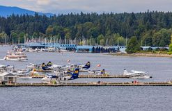 De Havilland Beaver sea planes docked at Harbour Airport at Coal. Vancouver, Canada - August 04, 2018: De Havilland Beaver sea planes docked at Vancouver`s royalty free stock photos
