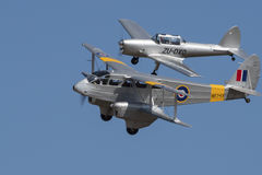 De Havilland Dragon Rapide och jordekorrebildande Arkivbilder